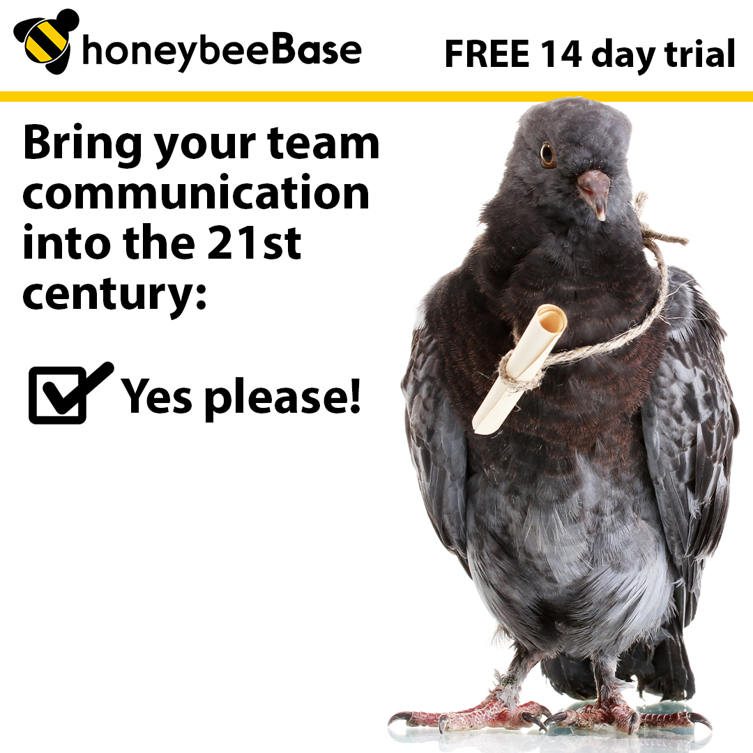 Unlocking the honeybeeBase Potential: Team Alerts